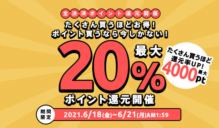 期間限定ポイント還元キャンペーン!たくさん買うほどお得!購入金額に応じて還元率UP!
